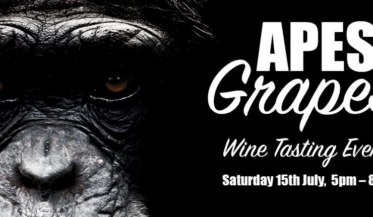 apes & grapes twycross zoo